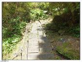 大羅蘭溪步道:大羅蘭溪步道 (13).jpg