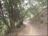 環保公園步道:環保公園 (6).jpg