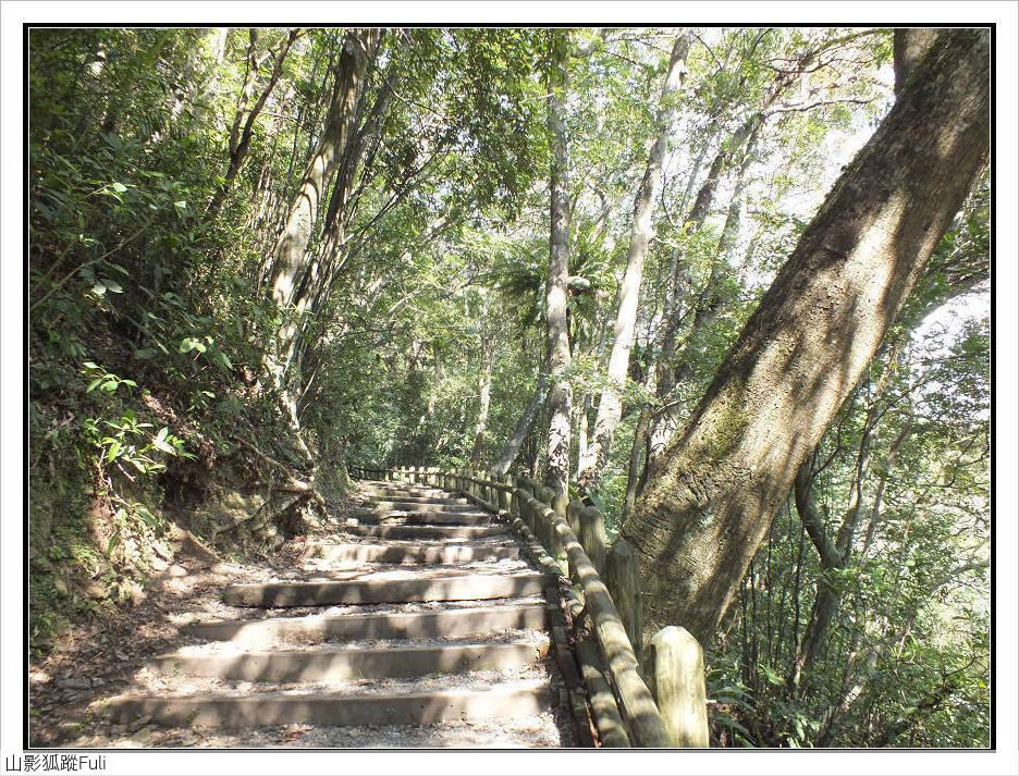 棲蘭森林遊樂區:棲蘭森林遊樂區 (35).jpg