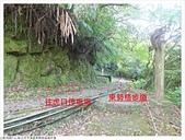 東勢格越嶺步道:東勢格越嶺步道 (6).JPG