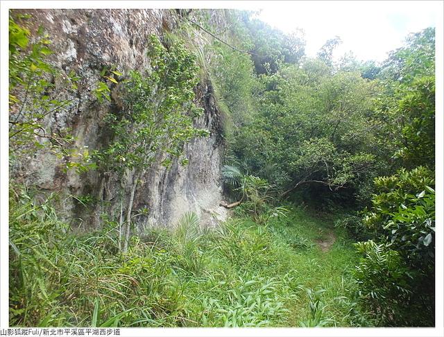 平湖西步道 (63).JPG - 平湖西步道