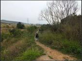 環保公園步道:環保公園 (19).jpg