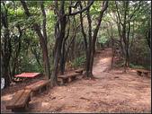 羊稠坑森林步道:羊稠坑步道 (10).jpg