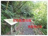 東勢格越嶺步道:東勢格越嶺步道 (10).JPG