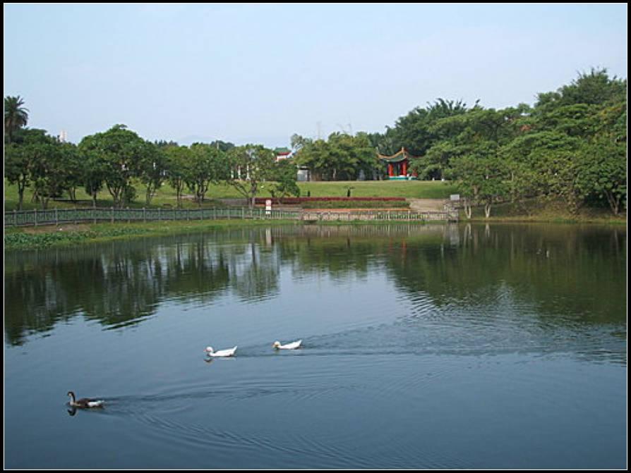 後山埤公園:後山埤 (9).jpg