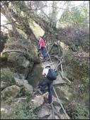 加里山登山步道:加里山 (19).jpg