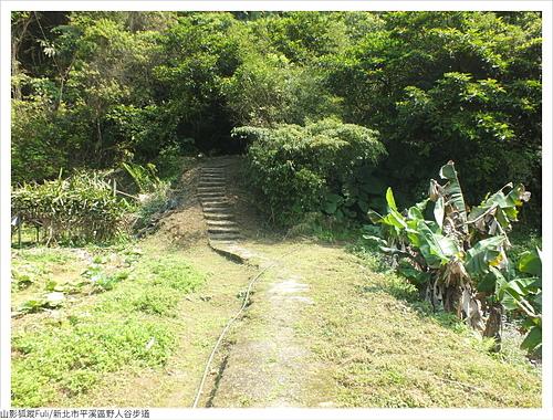 野人谷步道 (42).JPG - 野人谷步道