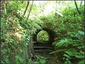 福州山森林步道:福州山 (11).jpg