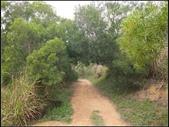 環保公園步道:環保公園 (7).jpg