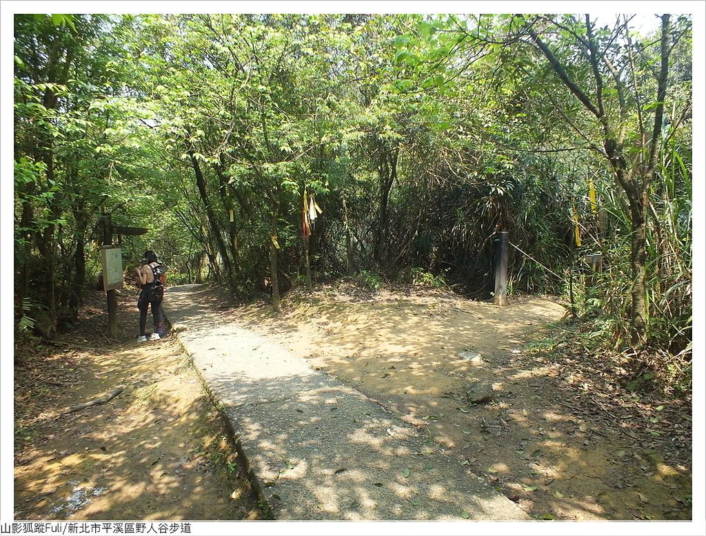 野人谷步道 (63).JPG - 野人谷步道