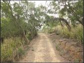 環保公園步道:環保公園 (18).jpg