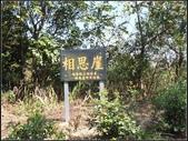飛鳳山步道:飛鳳山步道 (15).jpg