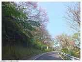 大尖山:大尖山 (15).JPG