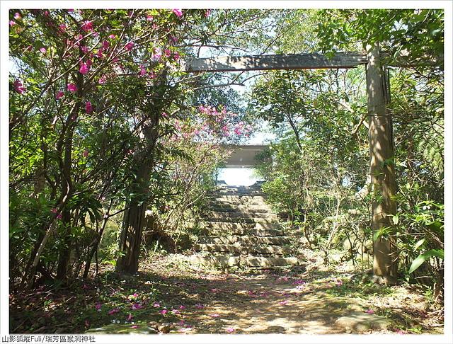 猴洞神社 (32).JPG - 猴洞神社鐘萼木