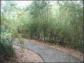 銅鏡山林步道:銅鏡村 (6).jpg