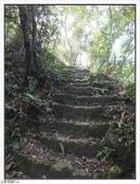 五指山登山步道:五指山登山步道 (20).jpg