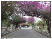 屏東市中山公園:中山公園 (6).jpg