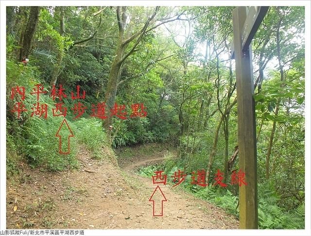 平湖西步道 (21).JPG - 平湖西步道