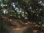 福州山森林步道:福州山 (7).jpg