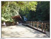 內洞森林遊樂區:內洞森林遊樂區 (22).jpg
