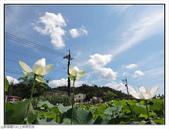 上林荷花田:上林荷花田 (1).jpg