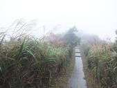 雨霧五分山:五分山稜線步道 (56).JPG