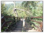 中央嶺森林步道:中央嶺森林步道 (10).jpg