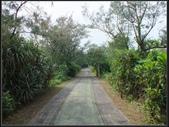 雙溪河邊野百合:雙溪河 (9).jpg