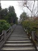 太平山莊、鐵杉林步道、原始森林步道:鐵杉林步道 (1).jpg
