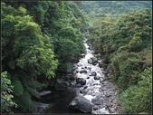 清涼有勁柑腳溪(盤山坑溪、中坑溪、下坑溪) :柑腳溪 (2).jpg