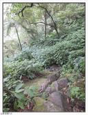 五指山登山步道:五指山登山步道 (53).jpg