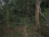 潤濟宮步道:潤濟宮步道 (13).jpg