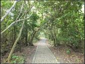 鵝鑾鼻公園:鵝鑾鼻公園 (16).jpg