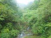 雨霧五分山:五分山稜線步道 (10).JPG