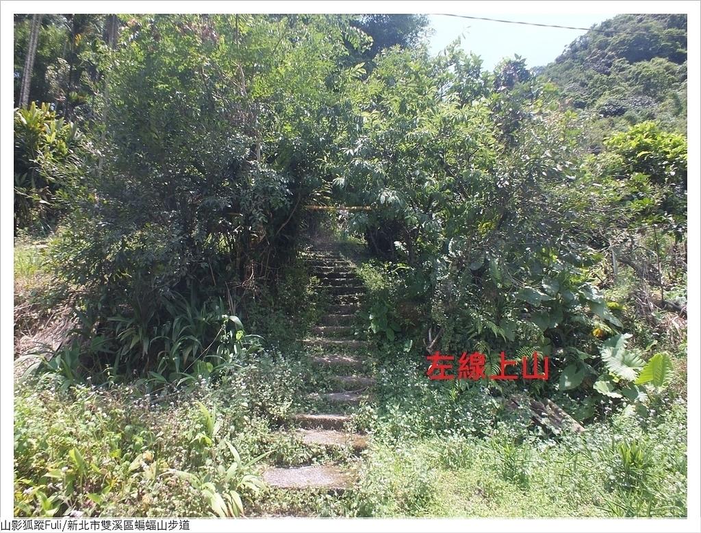 蝙蝠山步道 (4).JPG - 蝙蝠山步道