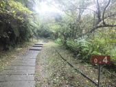 雨霧五分山:五分山稜線步道 (11).JPG