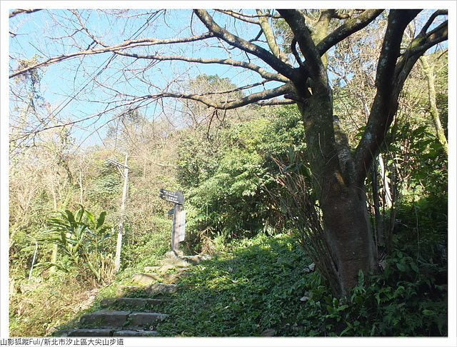 大尖山 (29).JPG - 大尖山步道