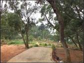 環保公園步道:環保公園 (2).jpg