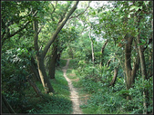 福州山森林步道:福州山 (3).jpg