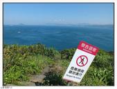 野柳地質公園野百合:野柳地質公園野百合 (20).jpg