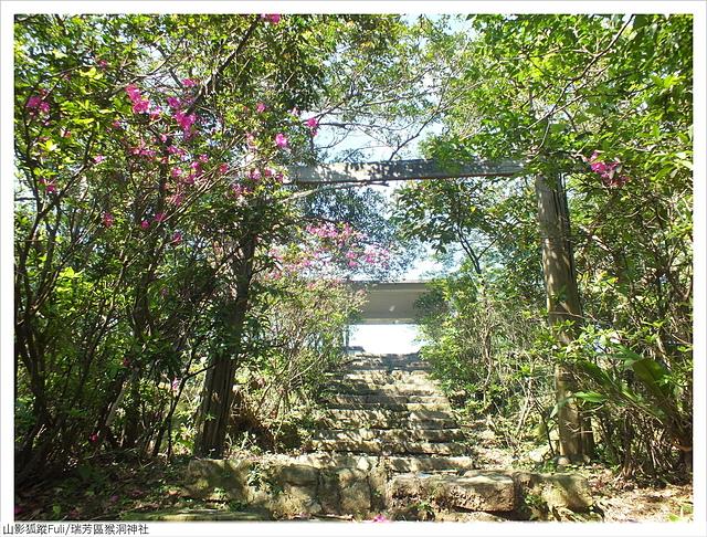 猴洞神社 (30).JPG - 猴洞神社鐘萼木
