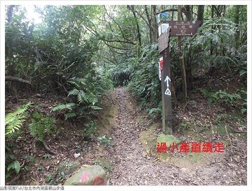 碧山步道 (16).JPG - 碧山步道