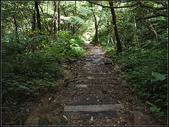 白雞山步道:白雞山 (14).jpg