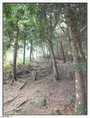 五指山登山步道:五指山登山步道 (43).jpg