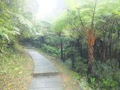 雨霧五分山:五分山稜線步道 (14).JPG
