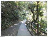 內洞森林遊樂區:內洞森林遊樂區 (11).jpg