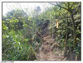 黃金瀑布、水螺山:黃金瀑布、水螺山 (4).jpg