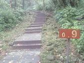 雨霧五分山:五分山稜線步道 (21).JPG