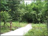 東和步道:東和步道 (12).jpg