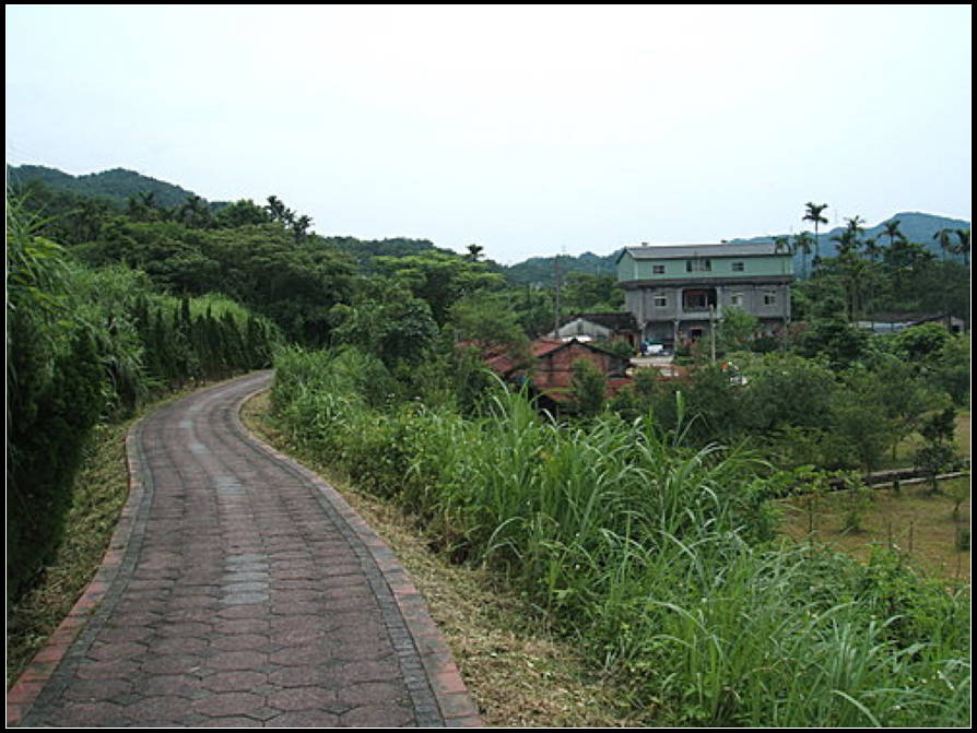 軟橋親水、田園步道:軟橋親水 (16).jpg